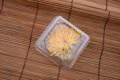 Asciughi il crisantemo Immagini Stock Libere da Diritti
