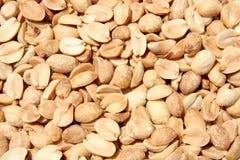 Asciughi il primo piano arrostito delle arachidi Fotografie Stock Libere da Diritti