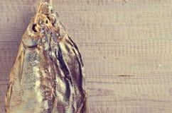 Asciughi l'orata del pesce Immagini Stock Libere da Diritti