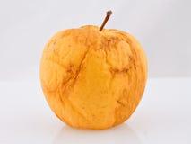 Asciughi la mela invecchiata con il percorso di residuo della potatura meccanica Fotografia Stock Libera da Diritti