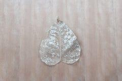Asciughi le foglie sulla tavola di legno Fotografia Stock Libera da Diritti