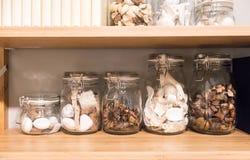 Asciughi le piante ed il corallo naturali in barattolo di vetro per la decorazione domestica AR immagine stock