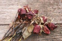 Asciughi rosa Fotografia Stock Libera da Diritti