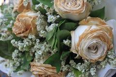 Asciutto bianco è aumentato dopo il giorno di S. Valentino, sbiadito è aumentato Immagini Stock