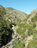 Asco rzeka w Corsica montains fotografia stock