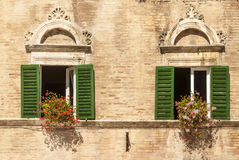 Ascoli - Windows with flowers of historic palace Stock Image