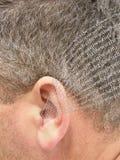 Ascolto dell'orecchio Immagine Stock Libera da Diritti