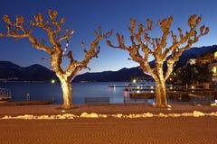 Ascona (Schweiz) - upplysta träd Fotografering för Bildbyråer
