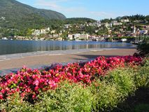 ASCONA travel city in SWITZERLAND, view of red flowers, beauty Lake Maggiore Royalty Free Stock Photo