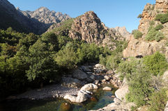 Ascoo rzeka w Corsica montains obraz stock