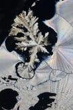 Ascorbic Acid Background Stock Image