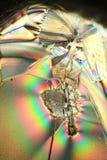 Ascorbic acid crystallized. Microscopic view in polarized light  of crystals of ascorbic acid Stock Image