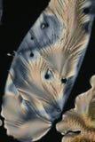 Ascorbic Acid crystals Royalty Free Stock Image