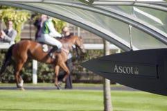 Ascot biegowy wydarzenie Obrazy Stock