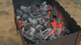 Ascuas ardientes para los kebabs en parrilla almacen de video