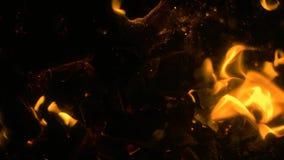 Ascuas de la hoguera que brillan intensamente que vuelan en la oscuridad metrajes