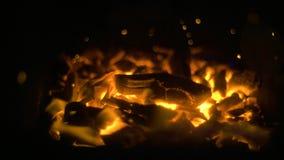 Ascuas de la hoguera que brillan intensamente que vuelan en la oscuridad almacen de video