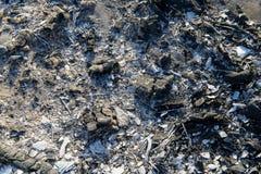 Ascuas extintas de un fuego Imagenes de archivo