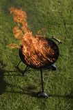Ase a la parilla la parrilla con el fuego en la naturaleza, ascendente al aire libre, cercano foto de archivo