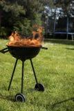Ase a la parilla la parrilla con el fuego en la naturaleza, ascendente al aire libre, cercano fotografía de archivo