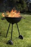 Ase a la parilla la parrilla con el fuego en la naturaleza, ascendente al aire libre, cercano imágenes de archivo libres de regalías
