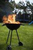 Ase a la parilla la parrilla con el fuego en la naturaleza, ascendente al aire libre, cercano foto de archivo libre de regalías