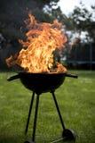 Ase a la parilla la parrilla con el fuego en la naturaleza, ascendente al aire libre, cercano imagenes de archivo