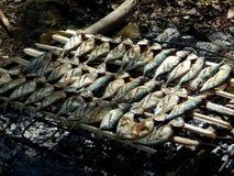 Ase a la parrilla los pescados para el almuerzo fotografía de archivo