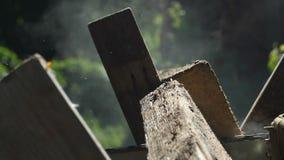 Aserrando a un tablero de madera con una motosierra, la vista lateral, proceso que asierra, el serrín de madera diferencia en div almacen de metraje de vídeo