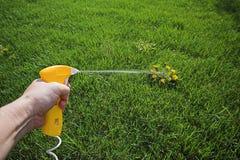 Asesino de mala hierba del aerosol Foto de archivo libre de regalías