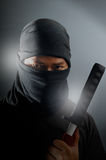 Asesino de Ninja Foto de archivo libre de regalías