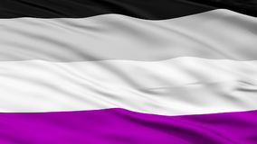 Asexual Close Up Waving Flag. Asexual Flag, Close Up Realistic 3D Animation, Seamless Loop - 10 Seconds Long stock video