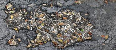 Asfalt met van barstenwortels en rotsen textuur Royalty-vrije Stock Fotografie