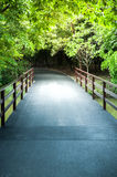 Asfalt road bridge pathway Stock Images