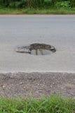 asfalt uszkadzający niebezpieczni wyboje byli fotografia stock