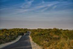 Asfalt wandelingsweg door de Slechte duinen van Cadzand, Nederland stock fotografie