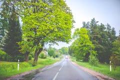 Asfaltera vägen efter regn i vår arkivfoton