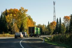 Asfaltera vägen till och med höstskogen arkivbild