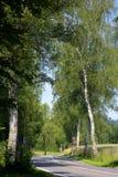 Asfaltlandsväg Arkivbilder