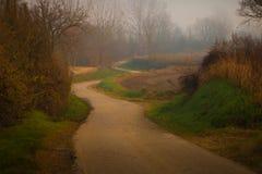 Asfaltlandweg in de herfst met mist stock foto
