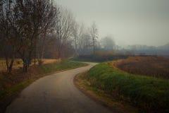 Asfaltlandweg in de herfst met mist stock afbeelding