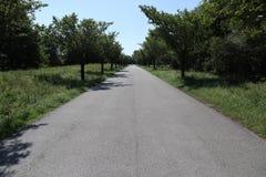 Asfalto-bicicleta-maneira foto de stock