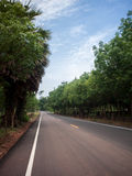 asfalto, fundo, fundos, azul, brilhante, nuvem, nuvens, c Fotografia de Stock Royalty Free