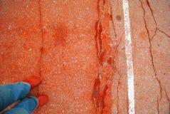 Asfalto vermelho com linha branca e pés em sapatas vermelhas Foto de Stock