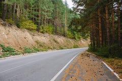 Asfaltowa droga w górach wśród sosnowych lasów Zdjęcia Stock