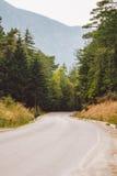 Asfaltowa droga w górach wśród sosnowych lasów Zdjęcia Royalty Free