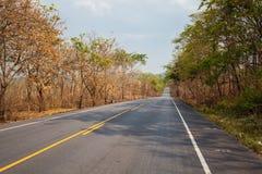 Asfaltowa droga w Tajlandzkim Zdjęcia Stock