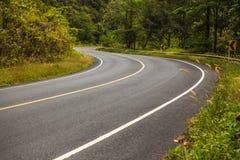 Asfaltowa droga w tropikalnym lesie deszczowym Obrazy Stock