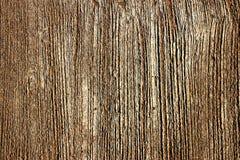 Asfaltowa drogowa tekstura Zdjęcia Stock