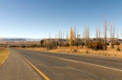 Asfaltowej drogi bieg Przez Suchego zima krajobrazu w Południowym Afric Obrazy Stock